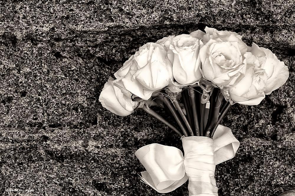 Photo in Random #roses #flowers #art