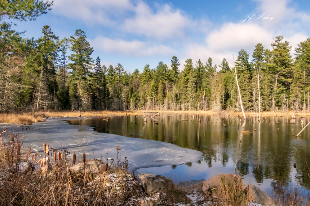 Photo in Landscape #landscape #waterscape #pond #ice #water #trees #sky #ontario #algonquin park #november #canon