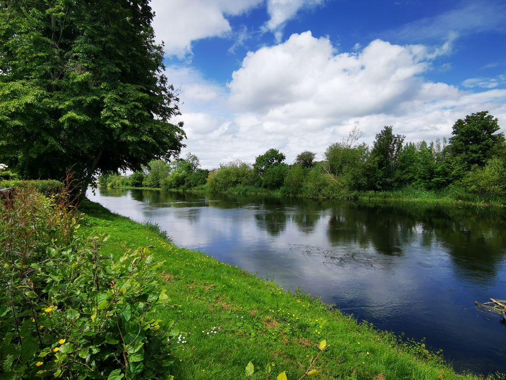 Photo in Landscape #river #summer #water #greenery #sunny #blue skies