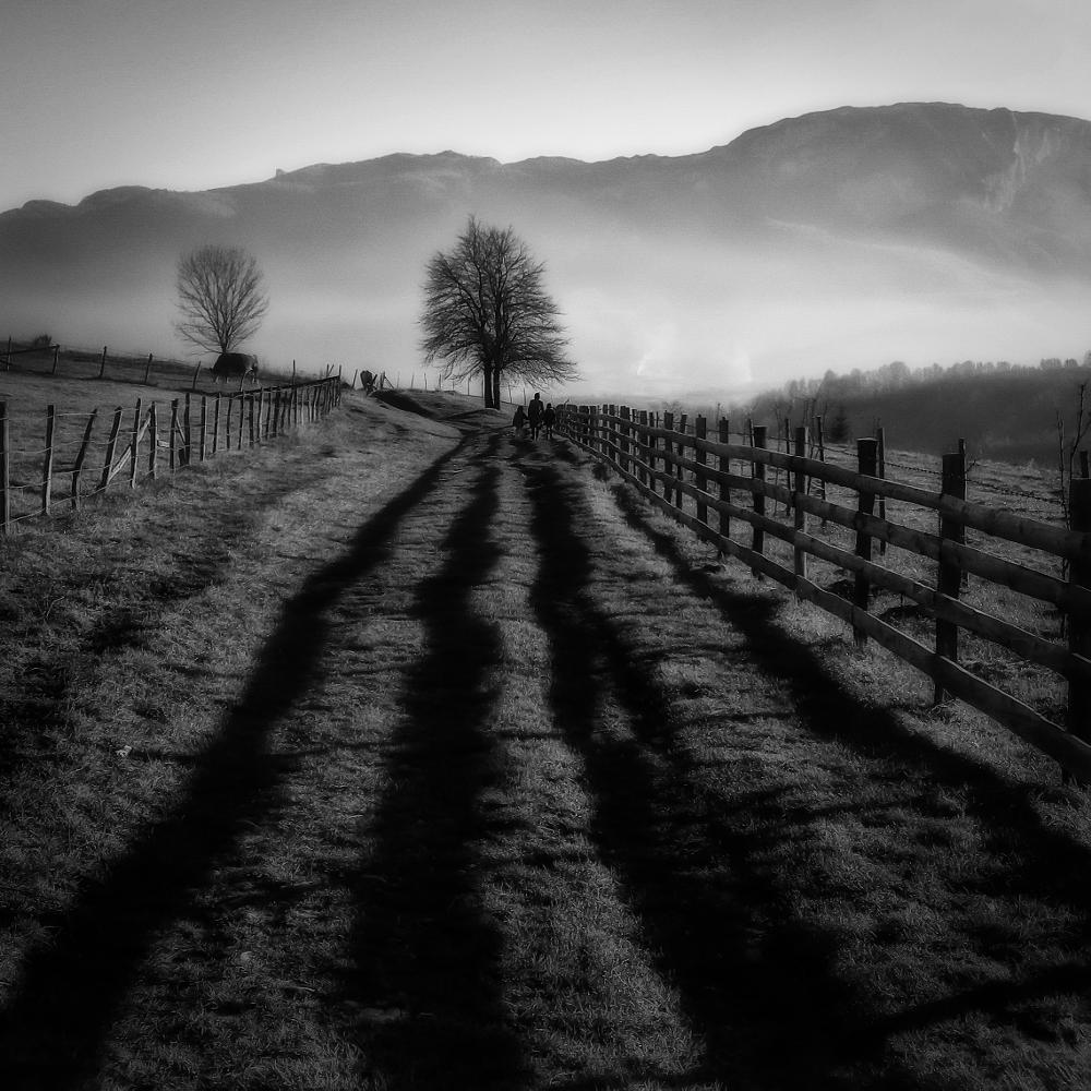 Photo in Landscape #blackandwhite #landscape #nature #people #fineart #outdoors #mist #fog #tree #mountain #fence #mood