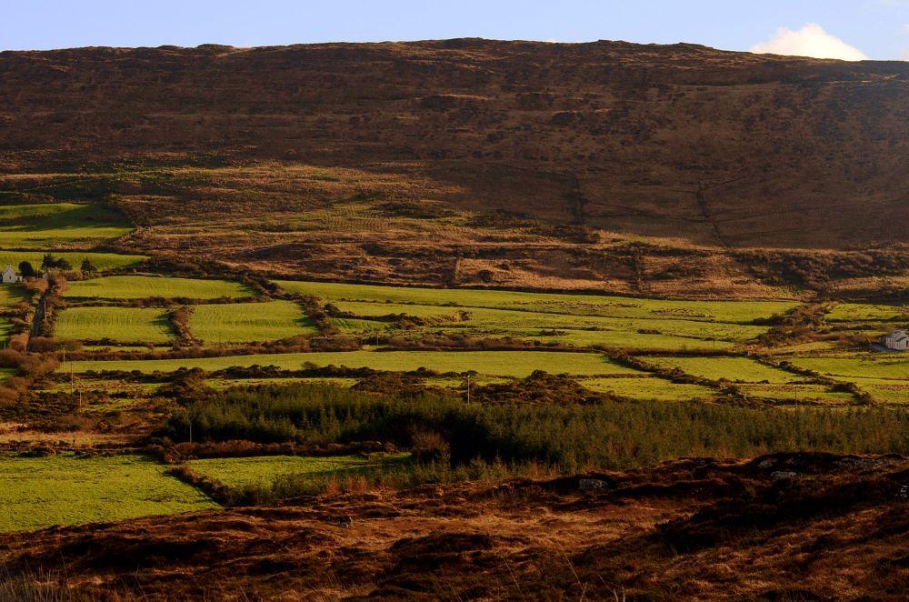Photo in Landscape #landscape #fields #trees #hillside #houses #neighbours #nikon #west cork #ireland