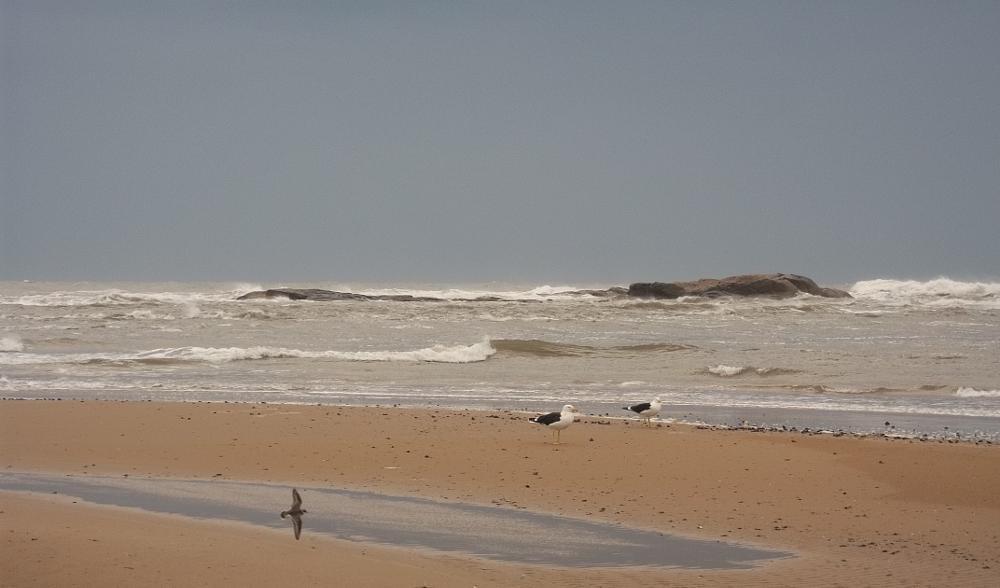 Photo in Sea and Sand #nature #random #travel