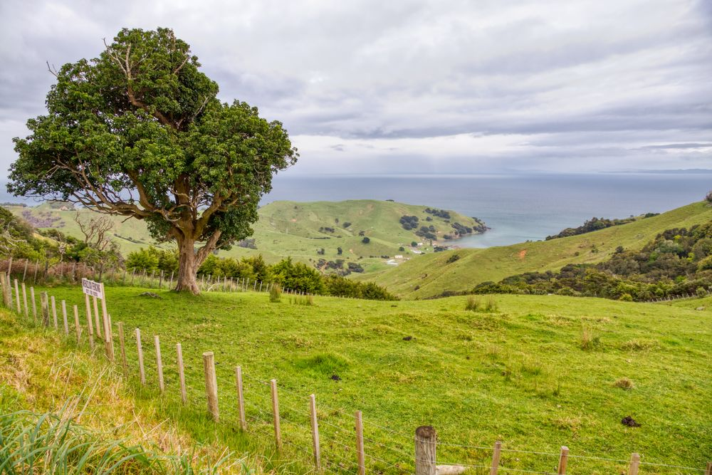 Photo in Landscape #coromandel coast beaches co