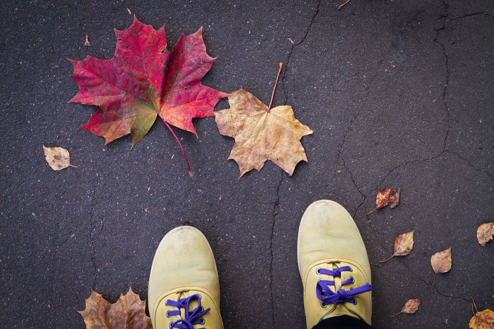 Photo in Random #self #shoes #yellow #yellowshoes #maple #maple leaves #autumn #autumn colours #canon 77d #close up #enjoy #match #perfect match #asphalt