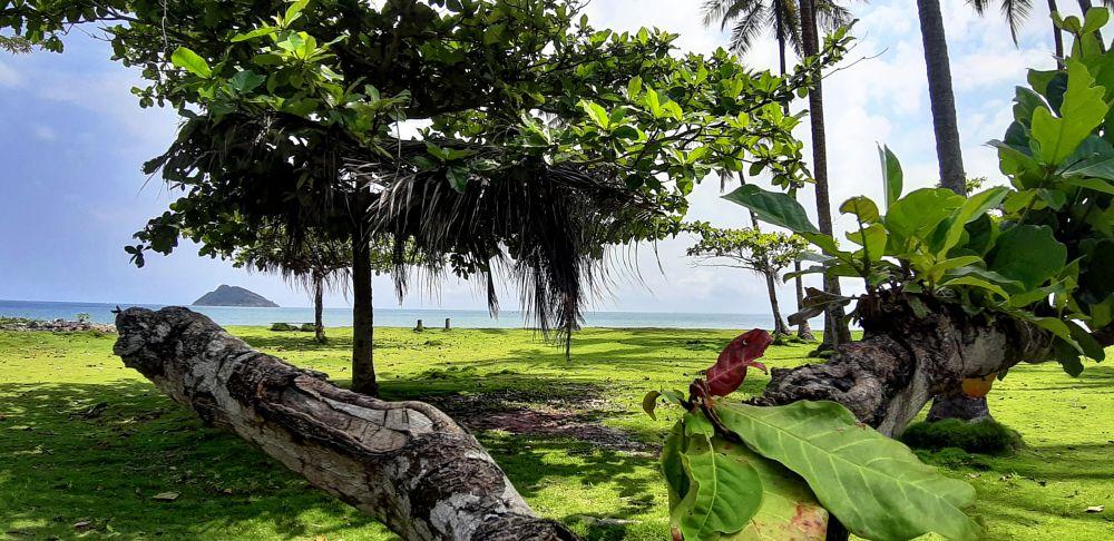 Photo in Landscape #palop #africa #são tomé e principe #green #samsunga7