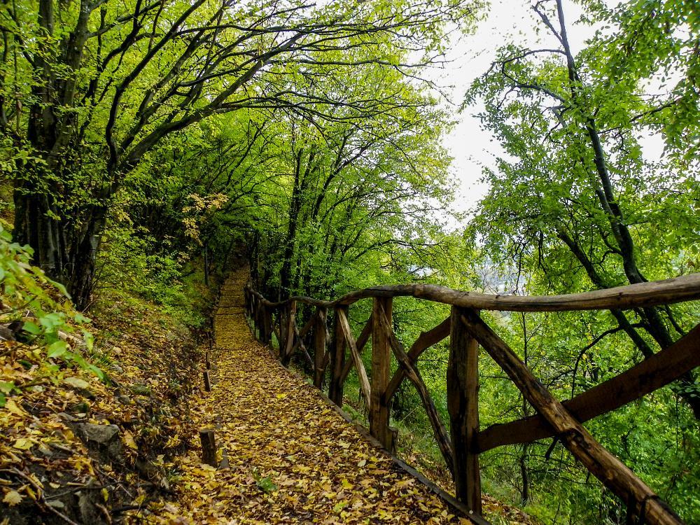Photo in Nature #walk #bulgaria #colars #bridge bridge