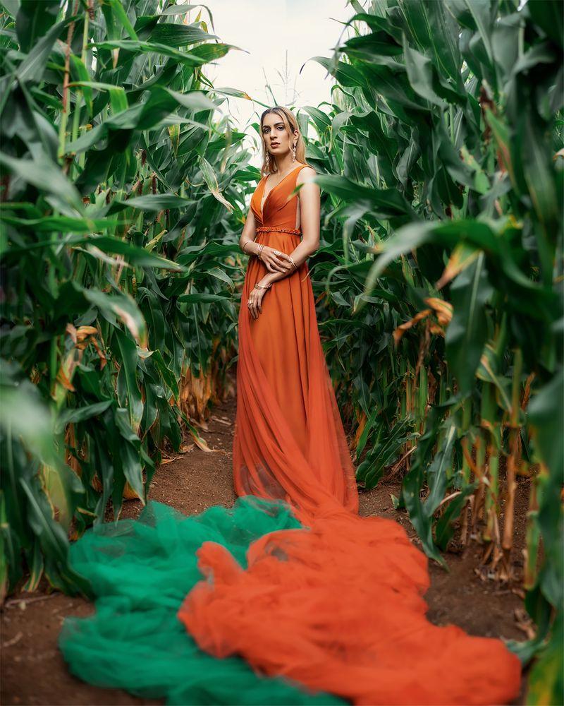 Photo in Fine Art #dress #goddess #greek #myth #green #corn #field #fairy #nature #harvest #orange #earth