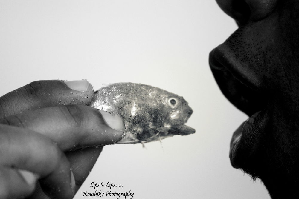 Photo in Abstract #b/w #fish #lips