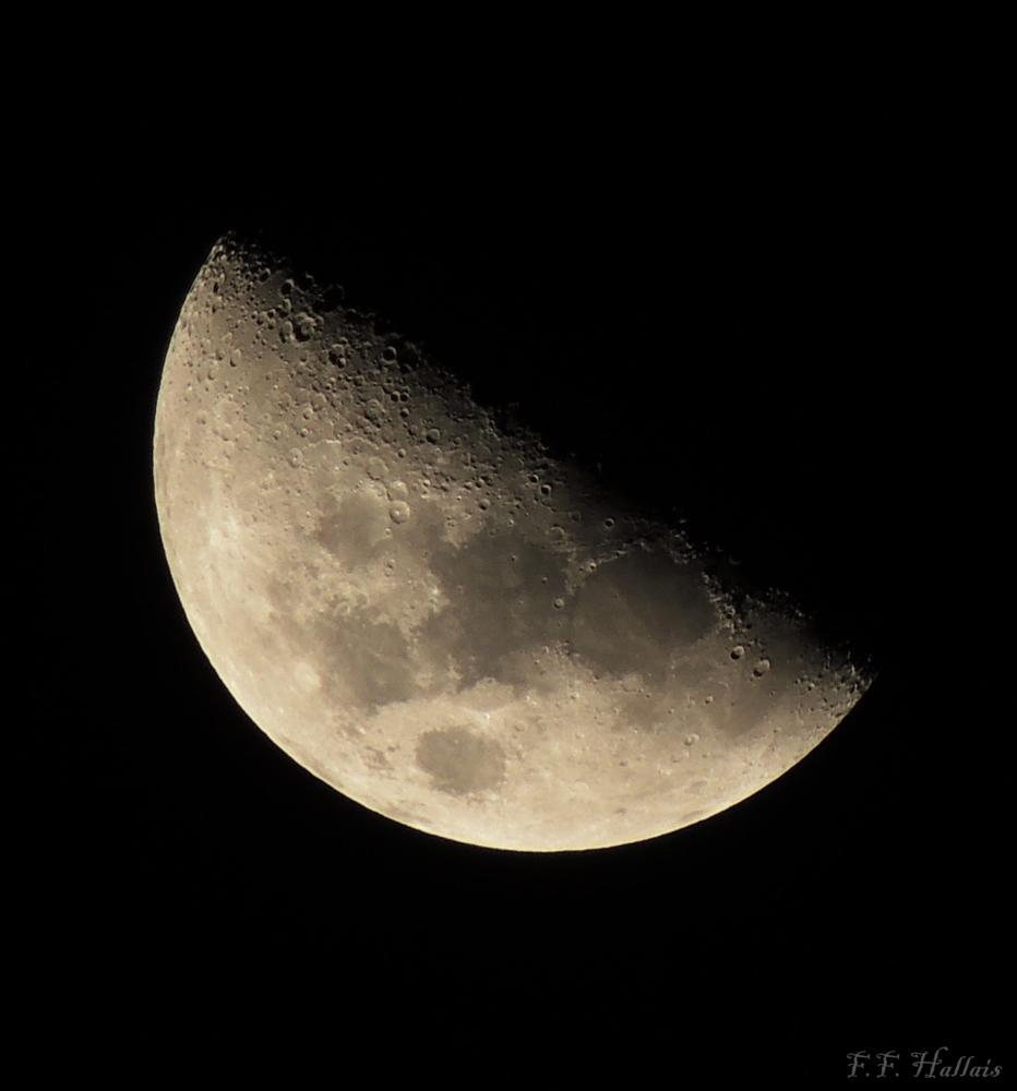 Photo in Astrophotography #ffhallais #lua #moon
