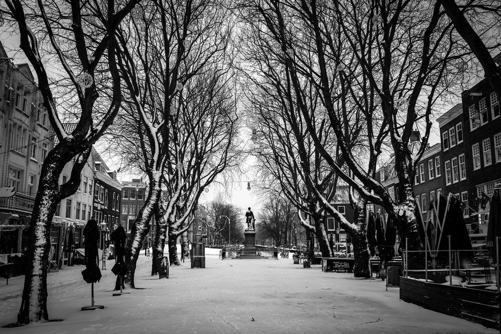 Photo in Random #bw #bnw #blacknwhite #blackandwhite #city #street #winter #snow #cityphotography #amsterdam #emptystreets #urban #holland #cityshot #monochrome #trees #travel