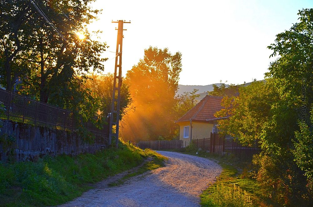 Photo in Cityscape #alley #road #dust #summer #village #trees #house #sunset #grass