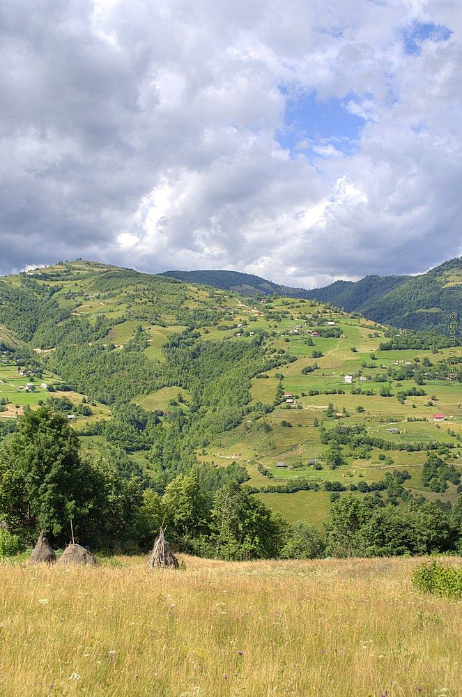 Photo in Landscape #mountain #view #high #sunny #clouds #heavy #summer #carpathians #transylvania #forest