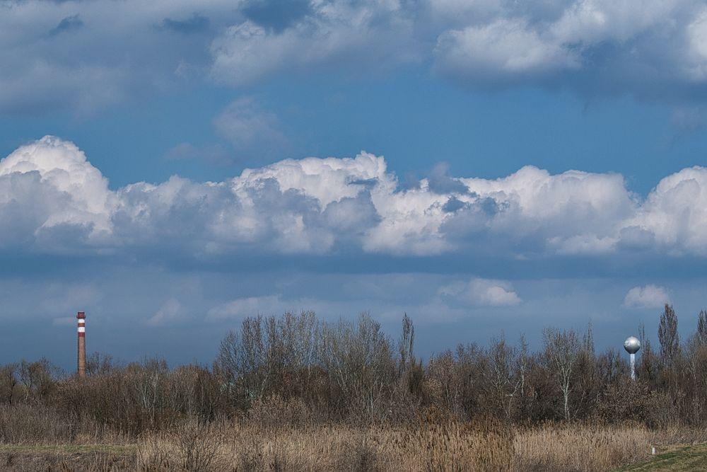 Photo in Landscape #nature