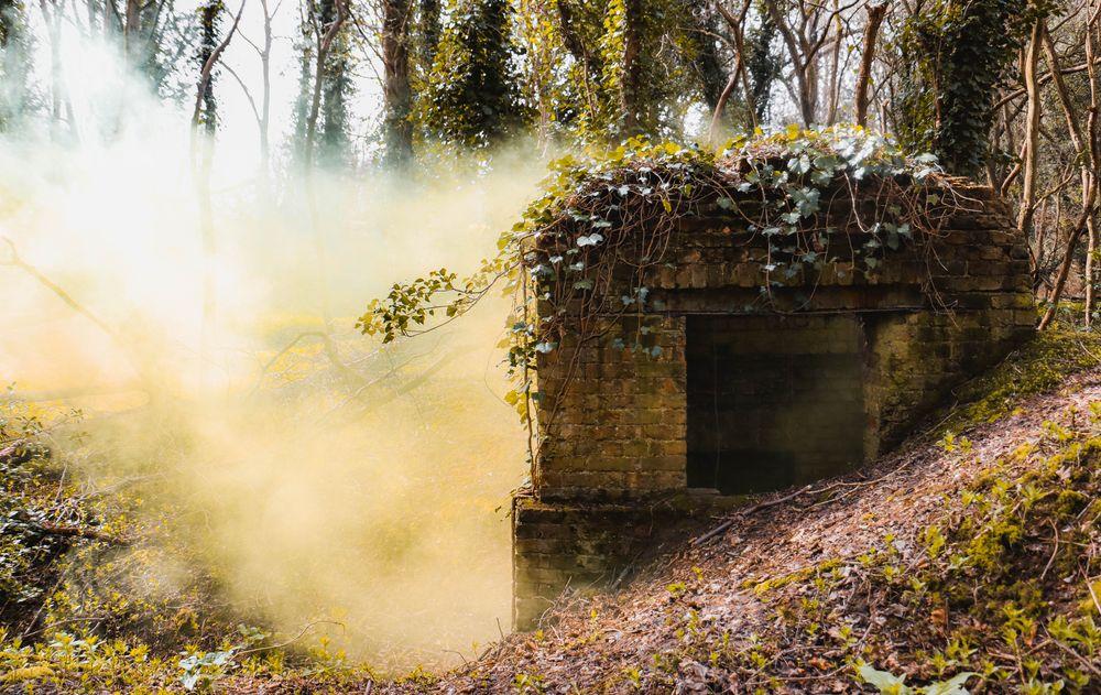 Photo in Rural #chimney #smoke #smoke bomb #forest #world war #yellow #green #trees #leaf #vine #bricks #spring #canon #tripod #manfrotto #smoke grenade