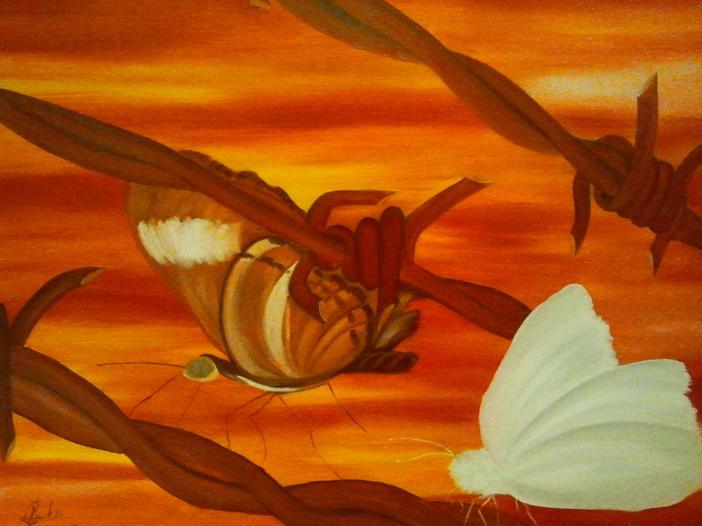 Photo in Fine Art #painting #oil on canvas #tablou #couleur #frontieres #border #barriere #vie #butterfly #papilon #colors #life