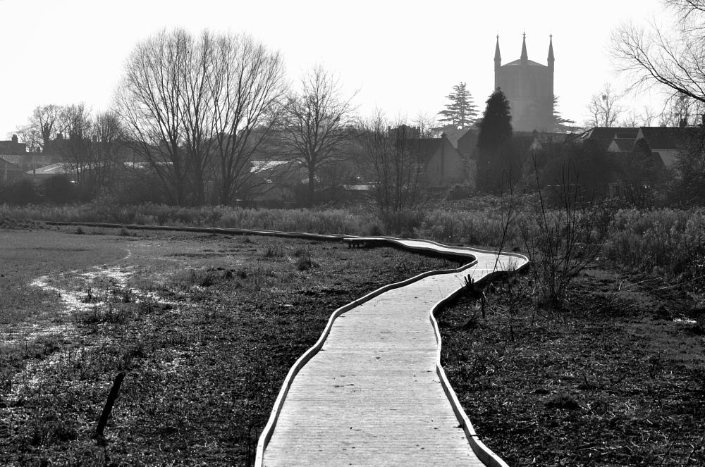 Photo in Black and White #black and white #causeway #abbey