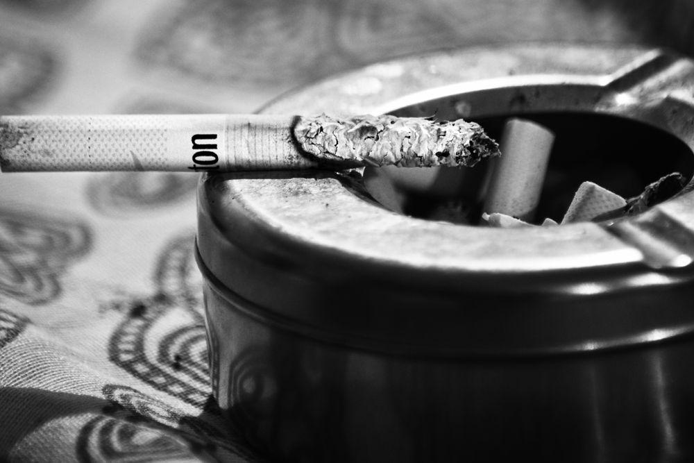 Photo in Macro #cigarette #b&w #harmful