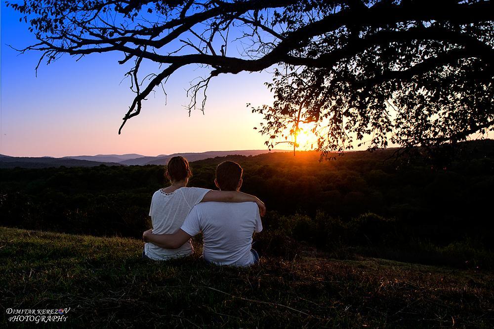 Photo in Landscape #love #sunset #tree