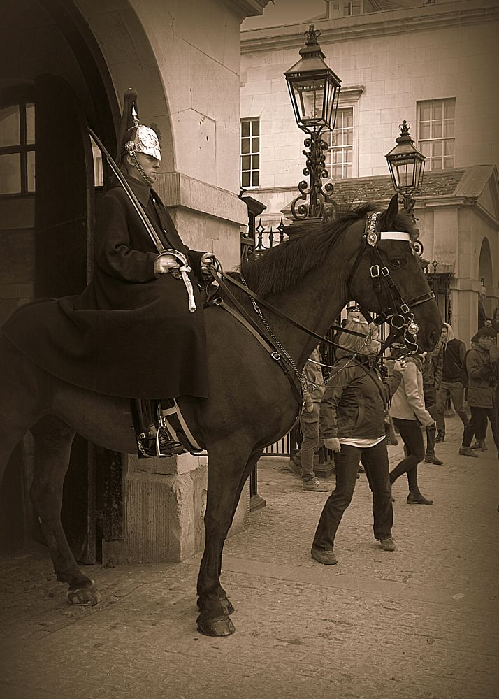 Photo in Animal #guard #man #horse #london #crowds #crowd #people #popular #busy #downing street #prime minister #tourist #tourism #outside #outdoors #monochrome