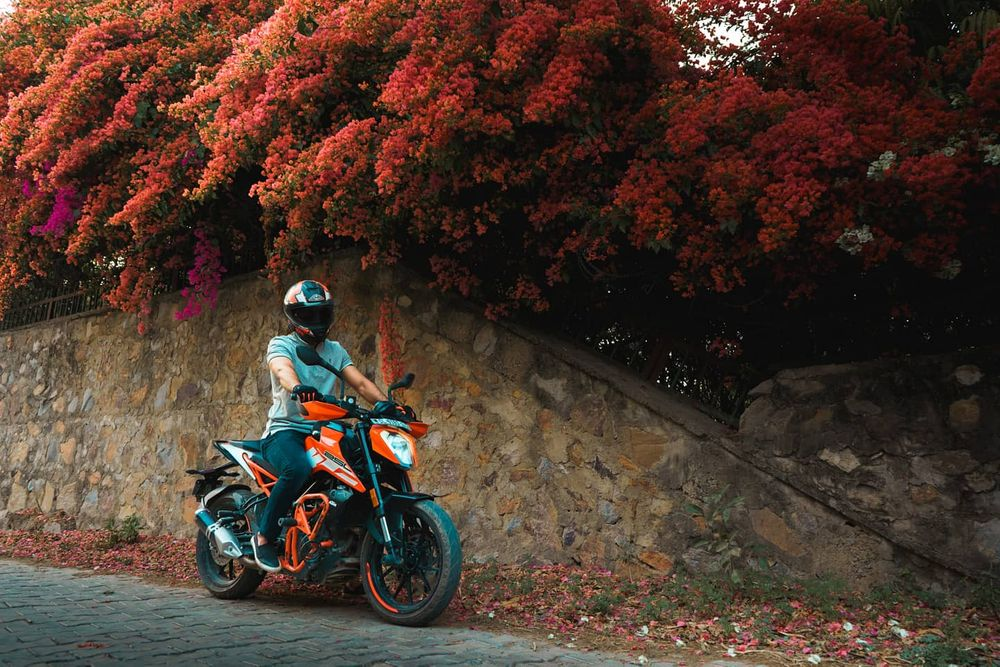 Photo in Portrait #bike #portraits #ktm #spring #autumn #colors