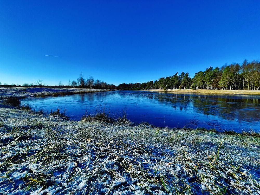 Photo in Random #lake #winter #forsy #hoarfrost #firest #bluesy #sunyday #mobilephoto