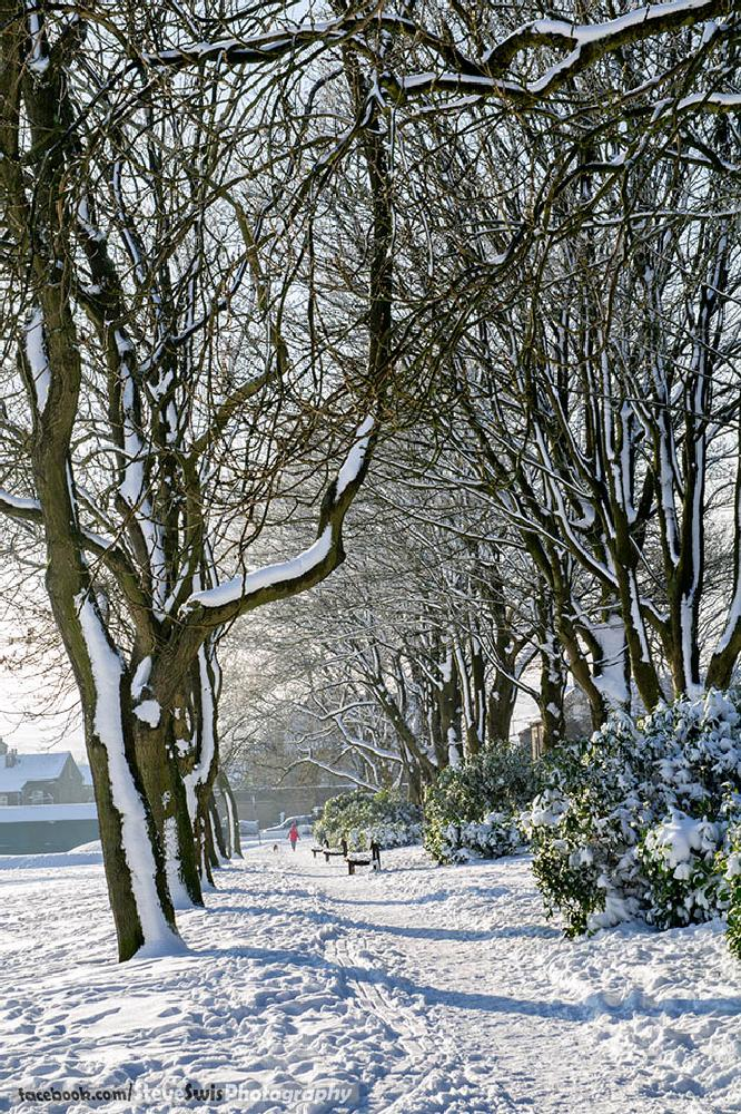 Photo in Landscape #foster park #park #denholme #yorkshire #snow