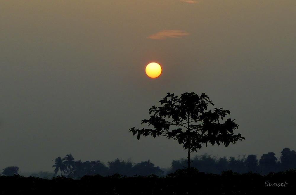 Photo in Nature #sunset #afternoon #evening #dark #shadow #nikon #d3300 #mist #fog #nature