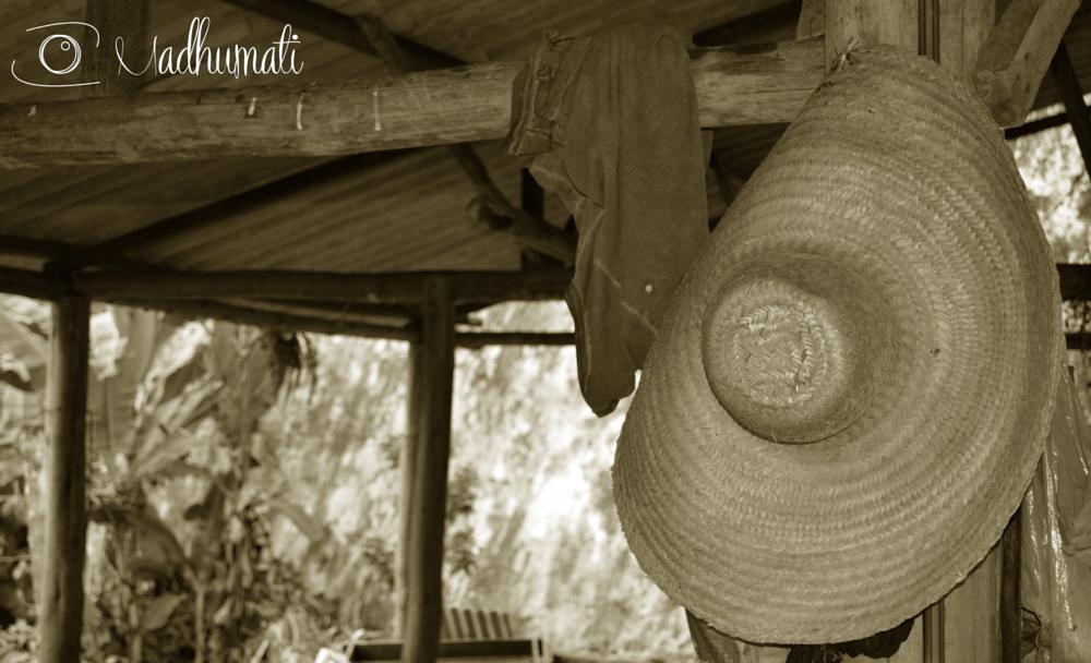 Photo in Rural #goura #gouravrindavan #paraty #estabulo #chapéu #rural