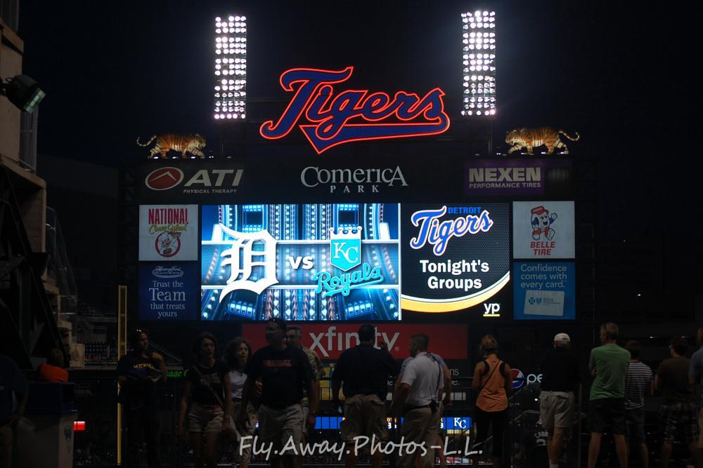 Photo in Sports #tigers #baseball #sports