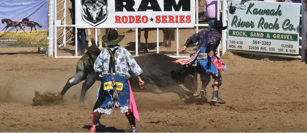 Photo in Sports #bullfighting #rodeo #bulls #out smart #out think #out maneuver #out run #clowns #get bull back into pen