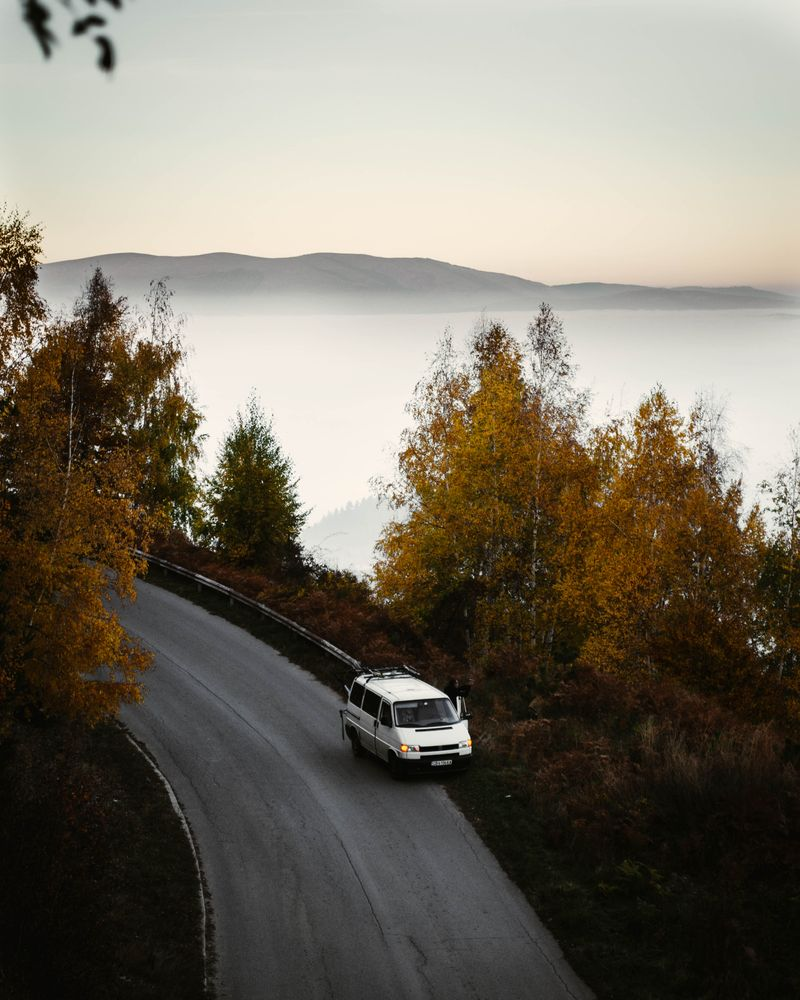 Photo in Nature #road #woods #autumn #forest #sky #fog #mist
