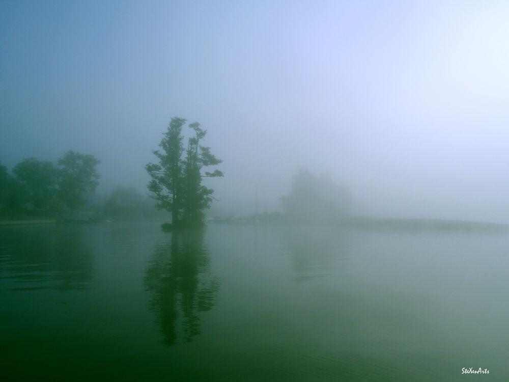 Photo in Nature #fog #tree #lake #mist #autumn #sweden #reflection