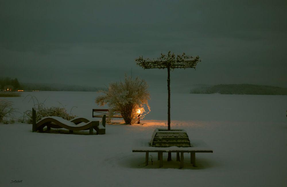Photo in Landscape #light #park #winter #snow #lake