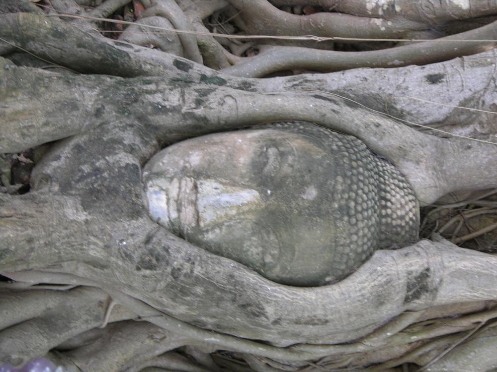 Photo in Travel #statue #religion