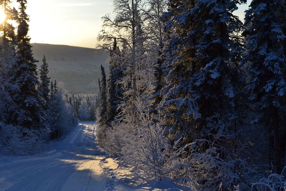 Photo in Landscape #wilderness #alaska #cold country #winter #back roads
