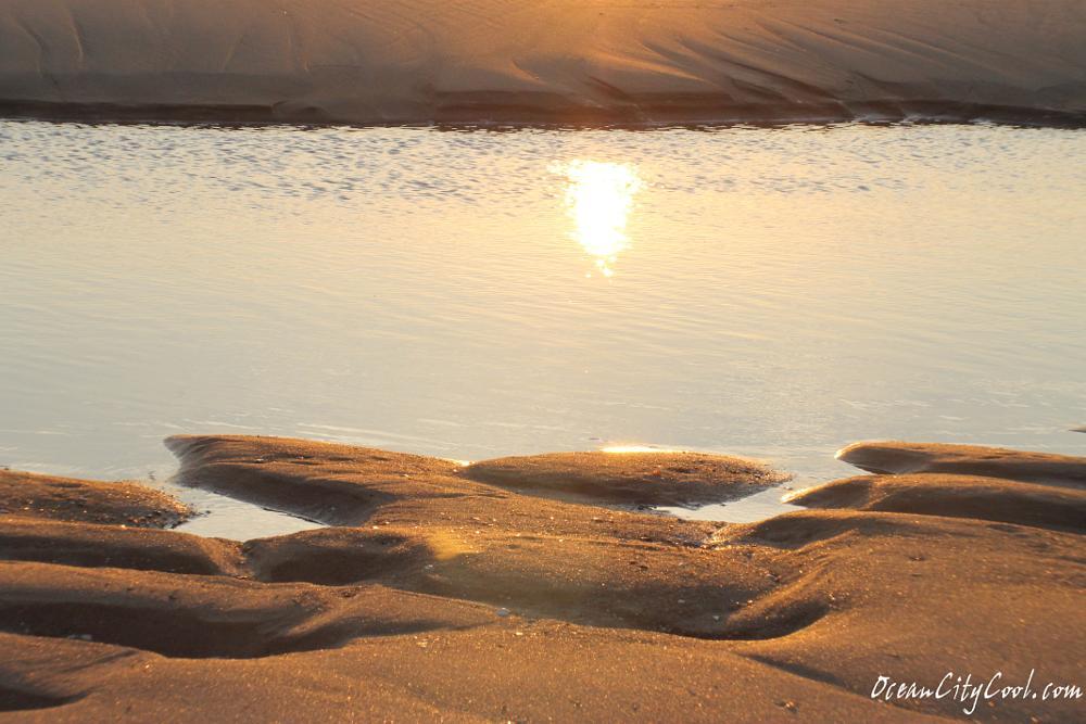 Photo in Nature #ocean city maryland #atlantic ocean #seashore #sunrise #nature #sand #ocean landscape