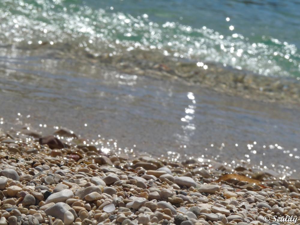 Photo in Nature #beach #france #le frioul #sea #seascape #summer