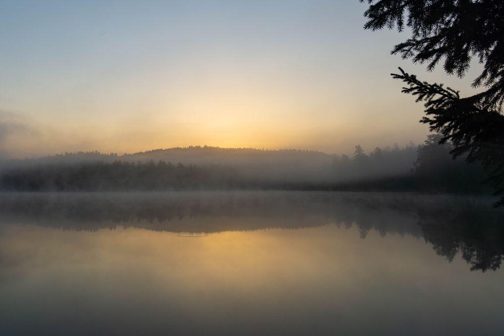 Photo in Landscape #serene #fog #morning #early #landscape #reflections
