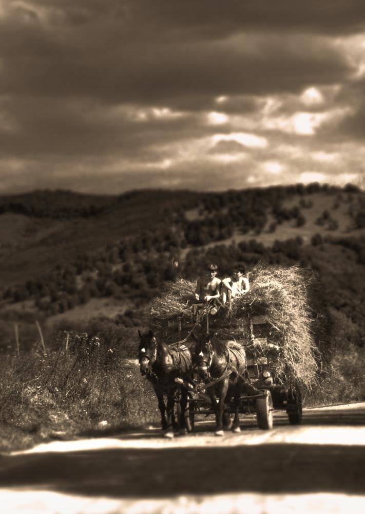Photo in Rural