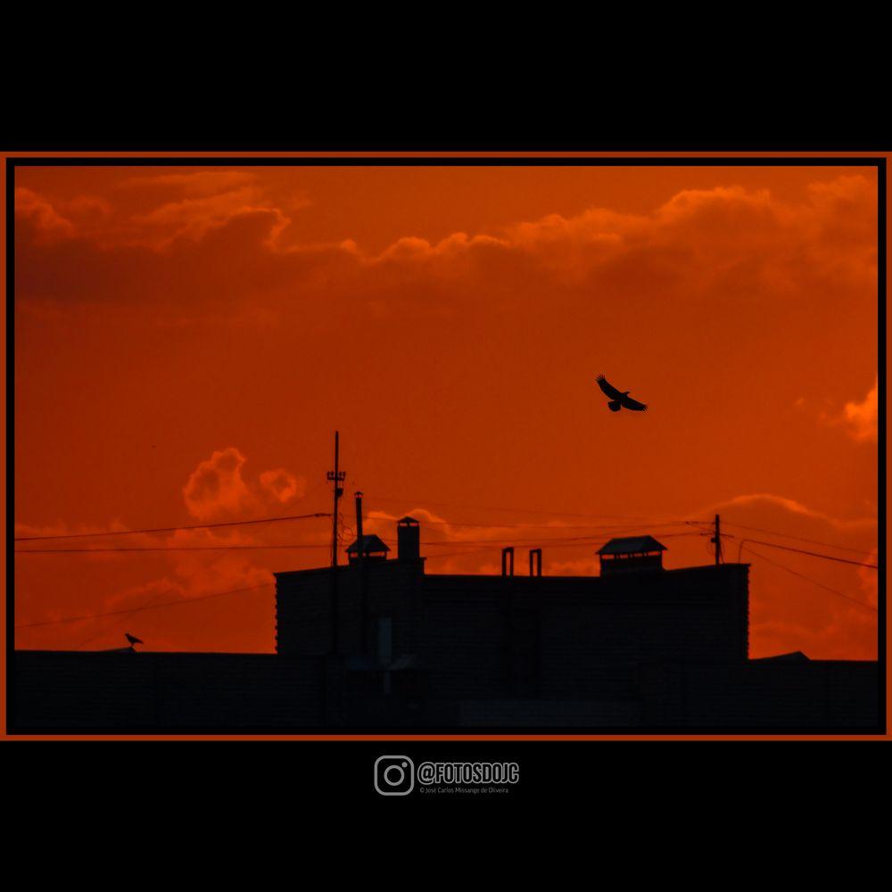 Photo in Landscape #pordosol #por do sol #sunset #sunset vibe #beautiful