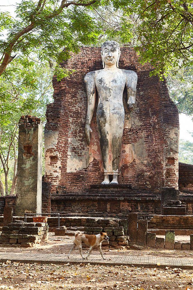 Photo in Travel #wat phra si iriyabot #kamphaeng phet #historical park #unesco #world heritage #ancient city #temple #ruins #thailand