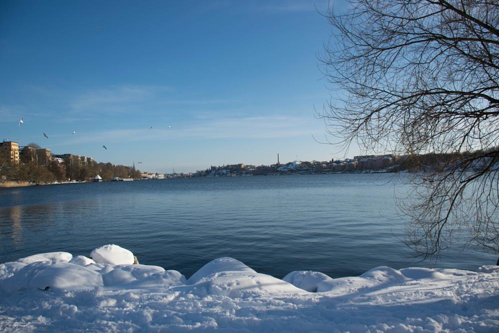 Photo in Landscape #old city #stockholm #rålambshovparken #park view