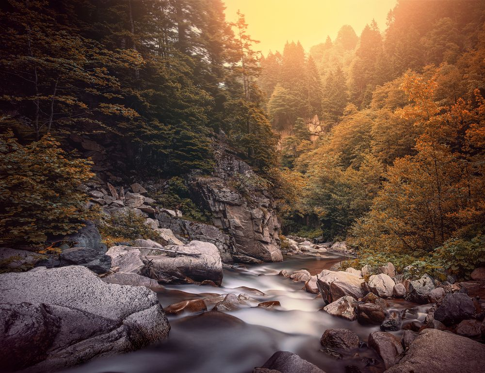 Photo in Landscape #nature #forest #river #rock #afternoon #autumn #mountain #valley
