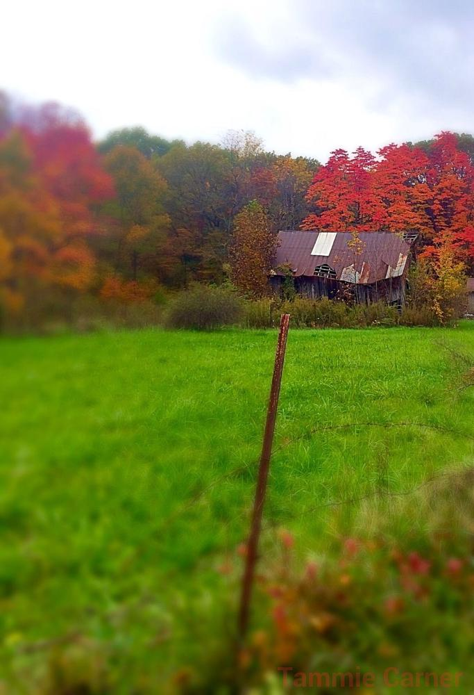 Photo in Landscape #indiana