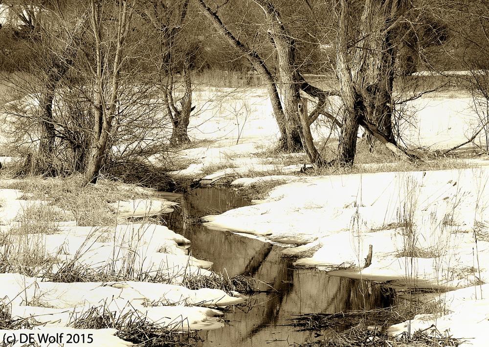 Photo in Landscape #landscape #snow #massachusetts