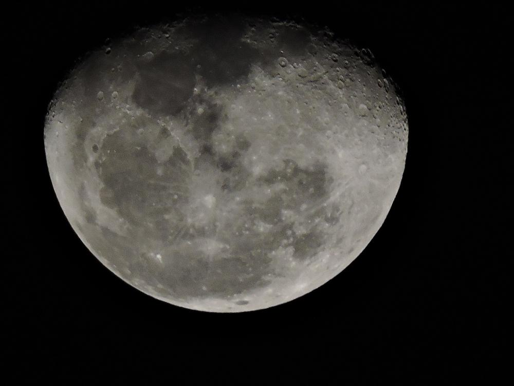 Photo in Astrophotography #moon #p600 #nikon #night #nature