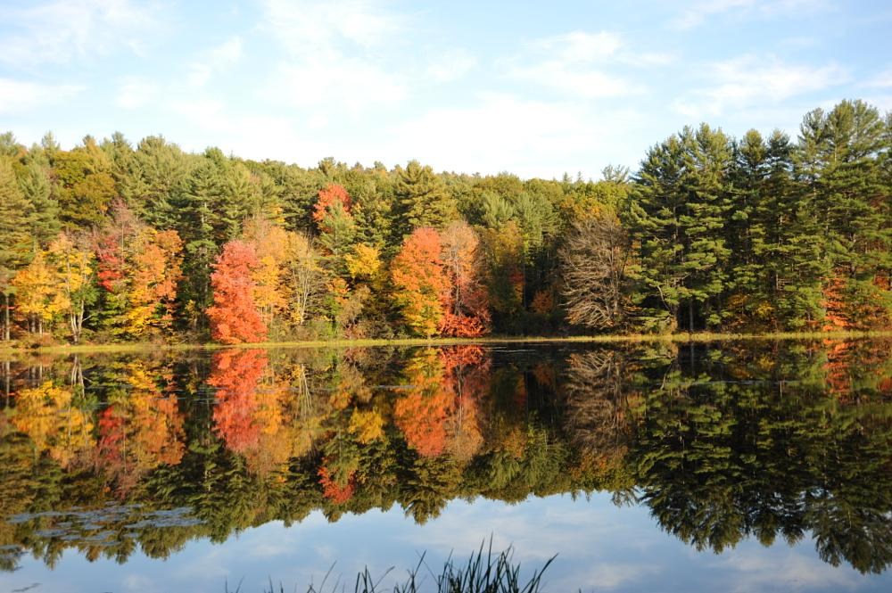 Photo in Landscape #reflections #fall #new hampshire #leaves #pond #amherst