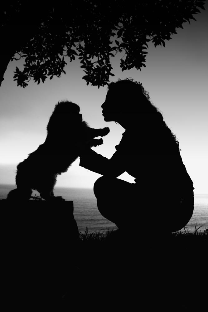 Photo in Black and White #contraste #dog #bw