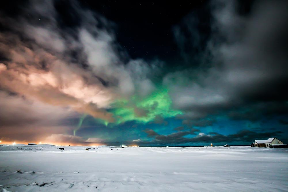 Photo in Random #snow #white #grass #straws #horse #horses #icelandic horses #black #horizon #city #city lights #house #houses #roof #roof tops #clouds #cloud formation #bright #blue #purple #display #aurora #aurora borealis #winter #cold #frost #sky #stars #star #starscape #landscape #cloudscape #iceland #vogar #reykjanes #reykjanes peninsula #keflavík #canon eos 650d #samyang 10mm #10mm