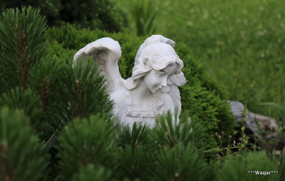 Photo in Random #princes #garden